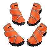 Petacc Botas para Perros Zapatos Impermeables para Perros Zapatos para Exteriores con Suela Antideslizante Resistente, 4 Piezas (L, Naranja)