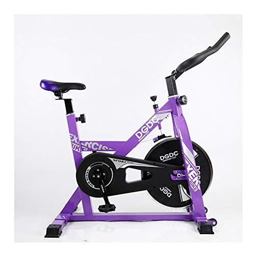 QWET Cyclette Indoor, Home Trainer -Resistance Band System - Cyclette - Fitness Indoor da Bici Pieghevole,Viola