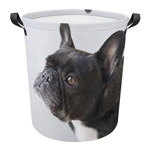 Large Laundry Basket French Bulldog Hamper Storage Bins for Bedroom Cute Canvas Dirty Clothes Basket Laundry Hamper
