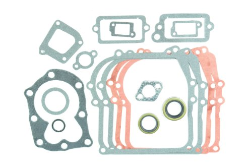 Oregon 50-408 Complete Gasket Set with Seals Replacement for Briggs & Stratton 699933, 298989