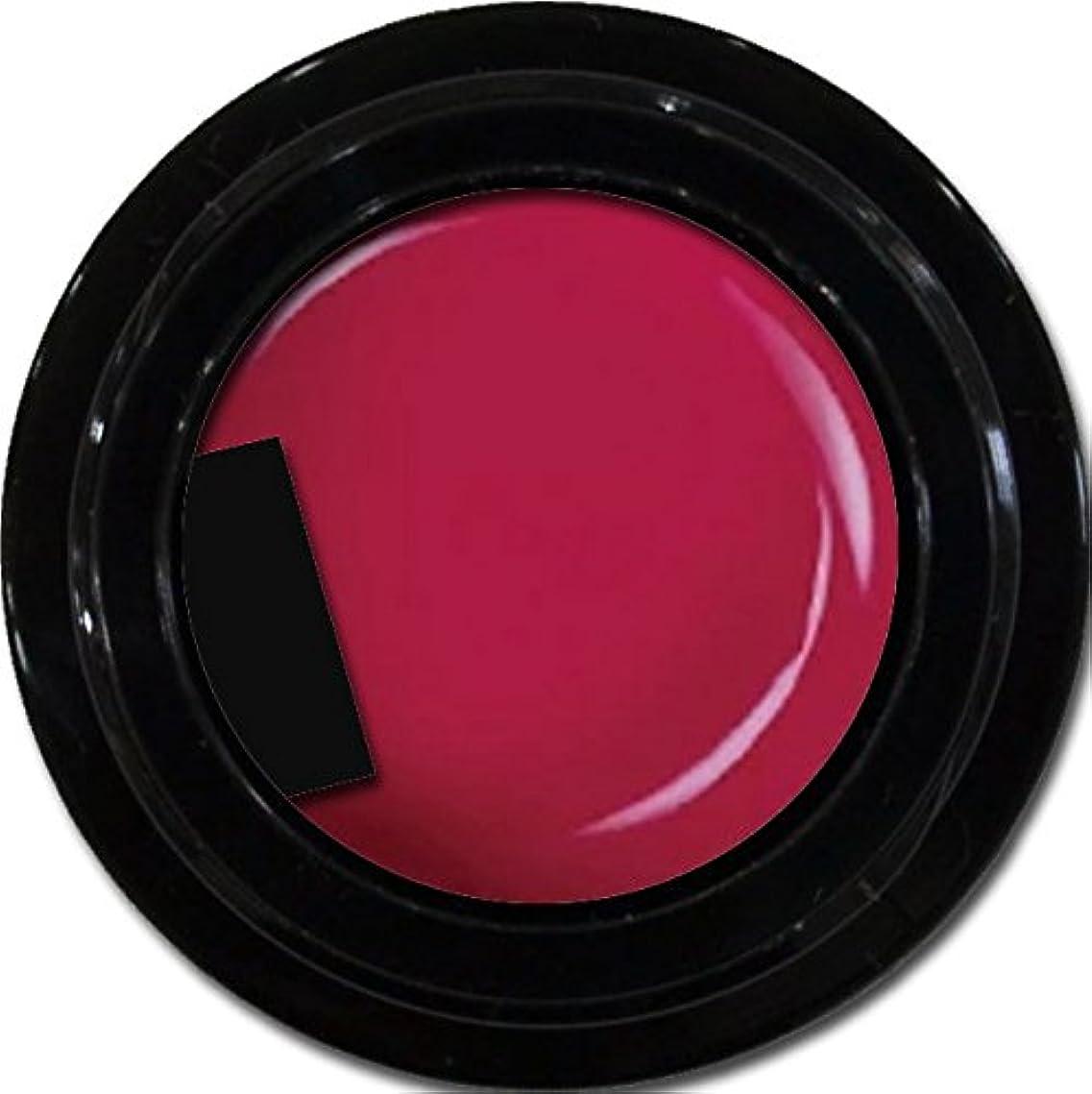 地平線舌な殺すカラージェル enchant color gel M404 RougeRed 3g/ マットカラージェル M404ルージュレッド 3グラム