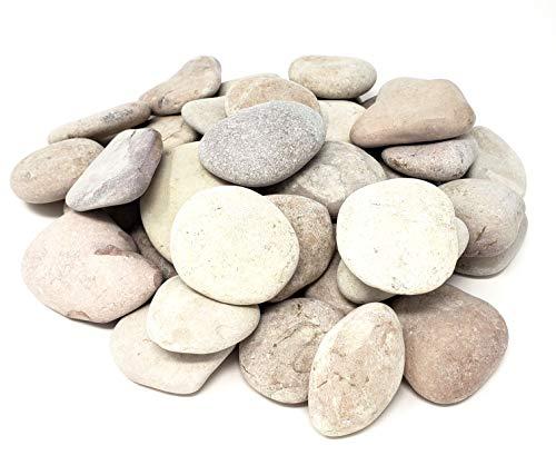 Capcouriers Garden Rocks - Landscaping Rocks for Garden and Landscape Design - 5 Pounds