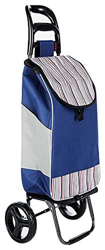 TabloKanvas Carrello della Spesa Pieghevole Carrello Domestico Car Portable 2 Ruota Silenzio Carrello dei Bagagli (Color : B, Size : 55x35x20cm)