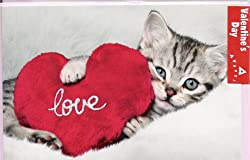 Cool Valentines Day Card No.6: Card with kitten and Red Heart