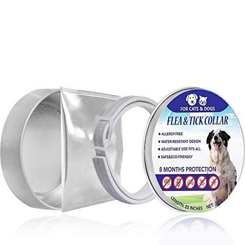 Enjoyfeel Hundefloh-Zeckenhalsband, Adjustable Safe Waterproof Anti-Floh-Kragen-Behandlung für kleine, mittlere und große Hunde - Schutz vor 8 Monaten Wirksamkeit