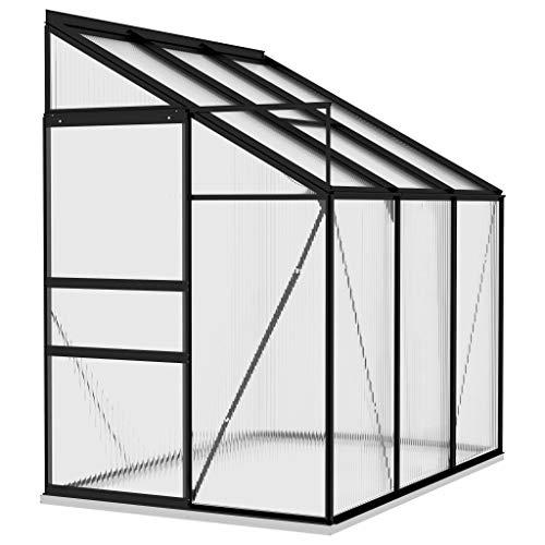vidaXL Gewächshaus UV-beständig Treibhaus Garten Tomatenhaus Pflanzenhaus Frühbeet Gartenhaus Anthrazit Aluminium 3,97m³ PC-Platte