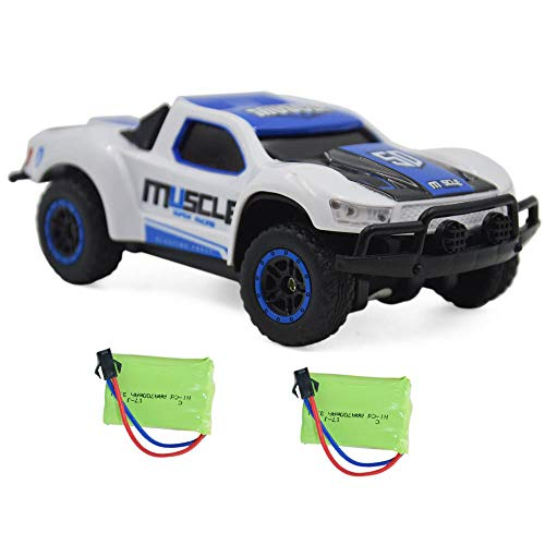 Blomiky 9 MPH High Speed Race RC Car 4WD 1:43 Scale 2.4G 4WD Electric Remote Control Car Vehicle D143 Blue White