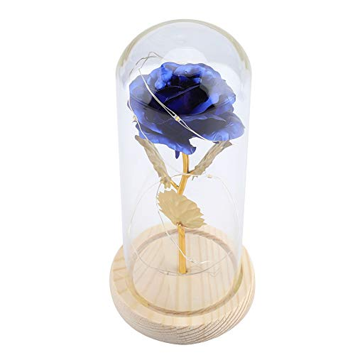 Fiore rosa del piccolo principe, fiore rosa eterno conservato con stringa LED in cupola di vetro.Buon regalo per fidanzata, San Valentino, festa della mamma(blu)