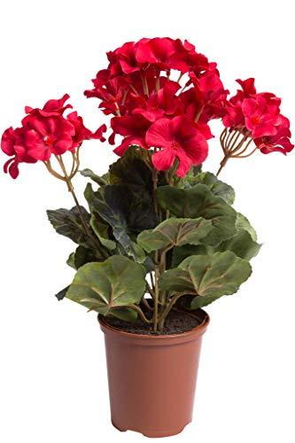 Flora-Seta künstliche Geranie (Geranienbusch) mit 7 Stielen und 3 kleinen und 4 größeren Blütenköpfen im Kunststofftopf (rot)