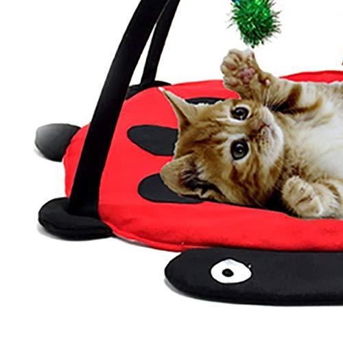 LoveOlvidoD Haustier Katze Bett Katze Spielzelt Spielzeug Mobile Aktivität Spielen Bett Pad Katze Decke Haus Pet Möbel Katze Haus Mit Ball