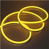 XUNATA 3m Flexible LED Neon lights Amarillo, Resistente al Agua 220V smd 2835 Tiras de LED, Líneas de Cables Luminoso Exterior para Fiestas y Decoración