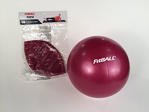 FitBALL Mini - 9in - Berry
