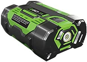 Best go battery blower Reviews