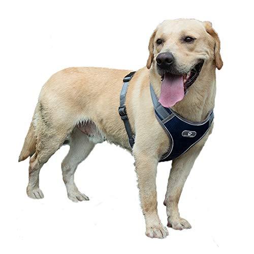 Feimax Hundegeschirr für Große Hunde Einstellbare Anti Zug Geschirr Reflektierend Brustgeschirr No Pull Dog Harness für Kleine Mittelgroße Hunde, Weich Mesh Atmungsaktiv Brustgeschirr (L, Marine)