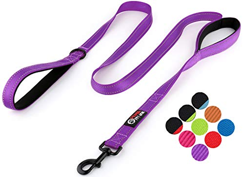Primal Pet Gear Dog Leash 6ft Long - Traffic Padded Two Handle - Heavy Duty - Double Handles Lead for Control Safety Training - Leashes for Large Dogs or Medium Dogs (6FT, Deep Purple)