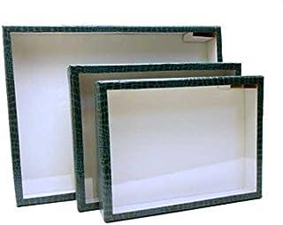 志賀ボール紙製硝子蓋標本箱 (<大型447>272×205×50mm)