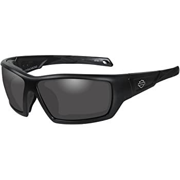 HARLEY-DAVIDSON Wiley X Nitro Smoke Grey Motorrad Brille
