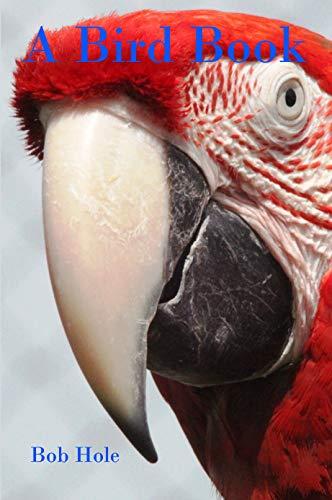 A Bird Book (English Edition)
