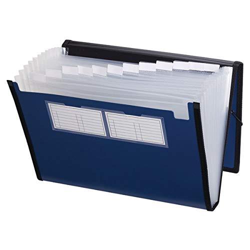 Pendaflex Professional Poly Expanding File, 13 Pockets, Letter Size, Metallic Blue