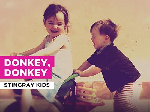 Donkey, Donkey al estilo de Stingray Kids