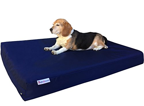 Dogbed4less Medium Large Orthopedic Dog Bed with Memory Foam for Pet, Waterproof Liner with Strong Nylon Blue External Cover, 37X27X4 Inches