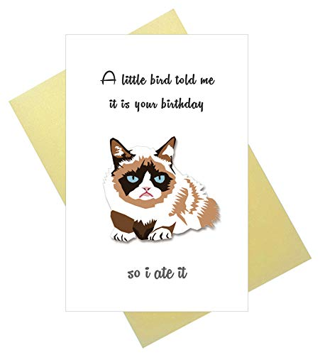 Funny Birthday Card, Grumpy Cat Bday Card, A Little Bird Told Me It is Your Birthday, So I Ate It