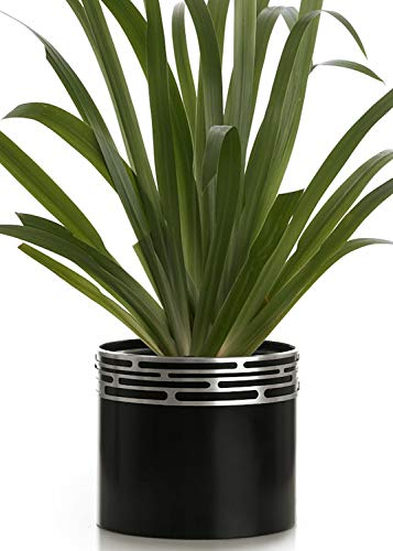 Sow Unique Self Watering Planter for Indoor use. Modern 7 Inch Solid Aluminum Leak Proof Designer Pot + Stylish Decorative Band Stand for Home or Office Plants, Flowers & Succulents (Black/Silver)