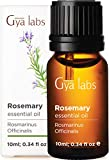 Gya Labs Rosemary Essential Oil for Hair Growth, Skin Care, Focus - Topical for Thin Hair, Oily Skin - Diffuse for Sinus, Congestion - 100 Pure Therapeutic Grade Rosemary Oil for Hair Growth - 10ml