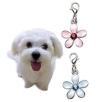 Chien Charms pour collier, Lot de 2Pendentif fleur décoratifs pour animal domestique Chiot Chat Collier Colliers