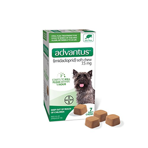 Advantus (Imidacloprid) 7-Count Flea Chews for Small Dogs 4-22 Pounds, Chewable Flea Treatment