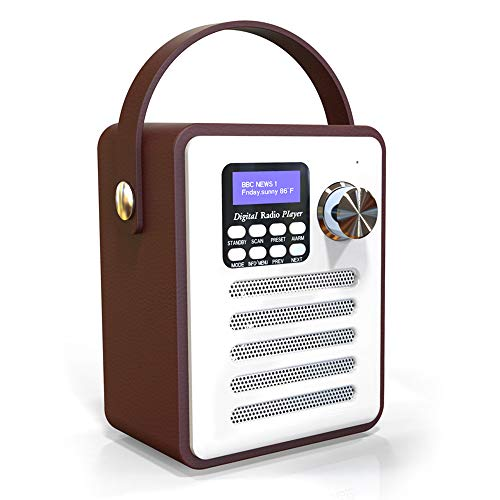 Gamogo Dab/Dab + Radio Digital Altavoces inalámbricos BT Reproductor de MP3 AUX IN TF U Lectura del Disco Radio FM con asa portátil Configuración de Reloj Despertador