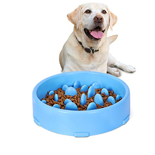 JASGOOD Slow Feeder Dog Bowl New Arriving Slow Feeding Interactive Bloat Stop Dog Bowls,Blue,Medium