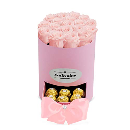 XValentine Petite Pink Box & Eternity Roses | Real Roses That Last A Year | Eternal Roses | Best Gifts for Her Anniversary | Preserved Roses That Last Forever | Eternity Roses Box (Pink Blush)