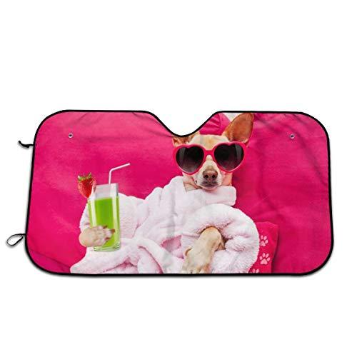 Chihuahua Dog Relaxing Sun Shade,Windshield Sun Shade Sunshades Keep Vehicle Cool Protect Your Car from Sun Heat & Glare Best Uv Ray Visor Protector(Size: 51'X 27.5')