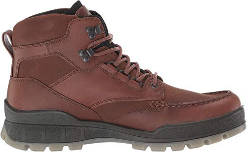 ECCO Men's Track 25 High GORE-TEX waterproof outdoor hiking Boot, Bison/Bison, 45 M EU (11-11.5 US)