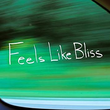 Feels Like Bliss
