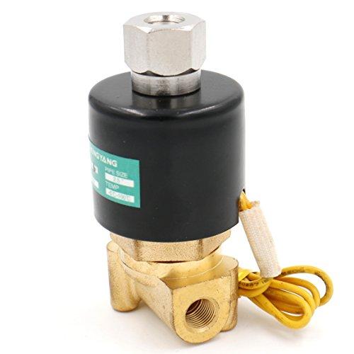 Heschen Válvula solenoide eléctrica de latón 2WK025-06 1/8 pulgadas AC 220V agua...