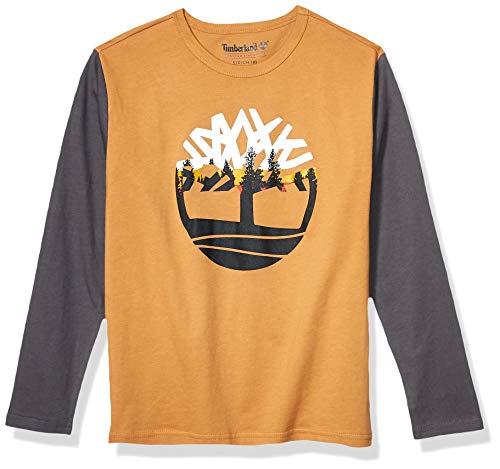 Timberland Boys' Big Long Sleeve Colorblock Heathered Tee Shirt, Wheat, M10/12
