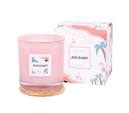 AVA & MAY Candela grande Bahamas(500g) – Candela vegana in vetro dal profumo delicato di cocco, vaniglia e monoi – Candele profumate realizzate a mano