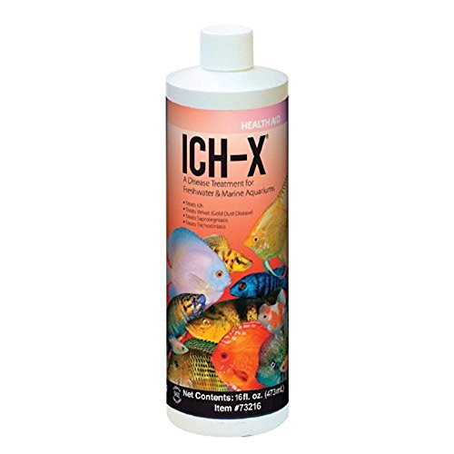 Hikari USA Inc. Ich x - Ich Treatment with More 16oz