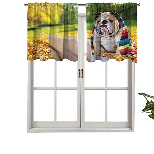 Hiiiman Blackout Short Curtain Panels Rod Pocket Dog in The Park, Set of 2, 54'x24' Small Half Window Valances for Bedroom