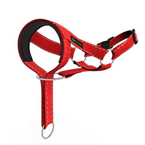 ILEPARK Cuello para Perros de Cabeza y Bozal de Adiestramiento Antitirones, de Colores, Ajustable y de Fácil Control para Entrenar a los Perros para Que Dejen de Tirar (L,Rojo)