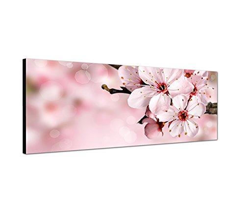 Kirschblütenbaum Wandbild auf Leinwand als Panorama in 120x40 cm Japanische Kirschblüte Sommer im Frühling beim blühen! Tolle Frühlingsfarben!pink rosa
