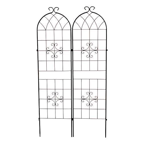 ガーデンフェンス 柵 鉄製フェンス・ヨーロッパスタイル 2枚組 ブラック 黒 アイアン 国華園 ガーデニング 連結式 簡易組立式