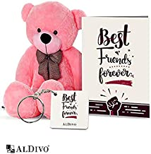 alDivo Best Friends Forever Gifts of Soft Teddy Bear, Best Friends Forever Key Ring, and Best Friends Forever Greeting Card (MKD10102)