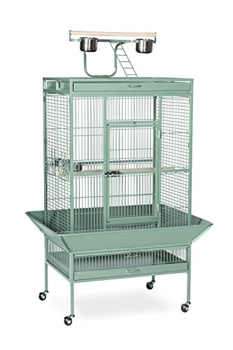 Prevue Hendryx Pet Products Wrought Iron Select Bird Cage 3153SAGE, Sage Green, 30-Inch by 22-Inch by 63-Inch