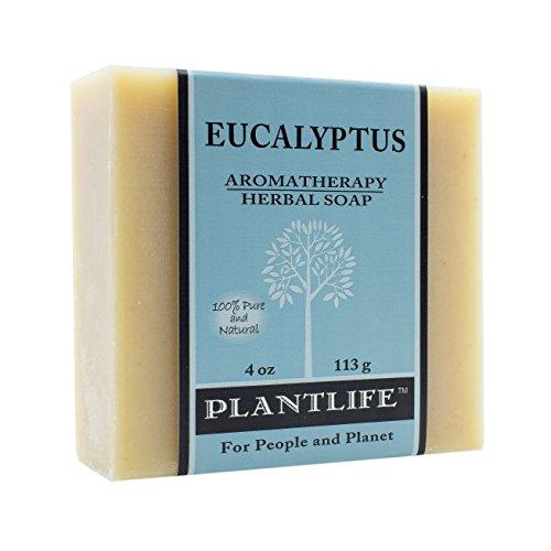 Plantlife Eucalyptus Herbal Soap Bar - Handmade with Natural Ingredients - Moisturizing Cleanse for Dry & Sensitive Skin - 4 oz