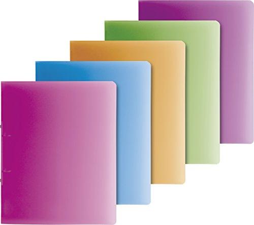 Brunnen 106551698 Ringbuch FACT!pp (A4, transluzente PP-Folie, 16 mm Füllhöhe, 2 Ringe) 4 verschiedene Farben)