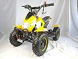 Mini quad de gasolina con motor de 49cc de 2 tiempos -ATV07 COBRA. / Mini quad para niños de 4 a 10 años/miniquad infantil (AMARILLO)