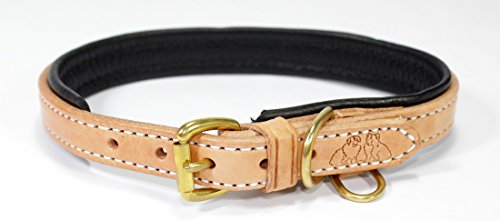 2 Red Dogs Genuine Leather Amish Dog Collars Made to Last a Lifetime. Crafted by Amish Harness Makers in Pennsylvania. Comfortable Pebble Leather Lining, Solid Brass or Stainless Hardware.